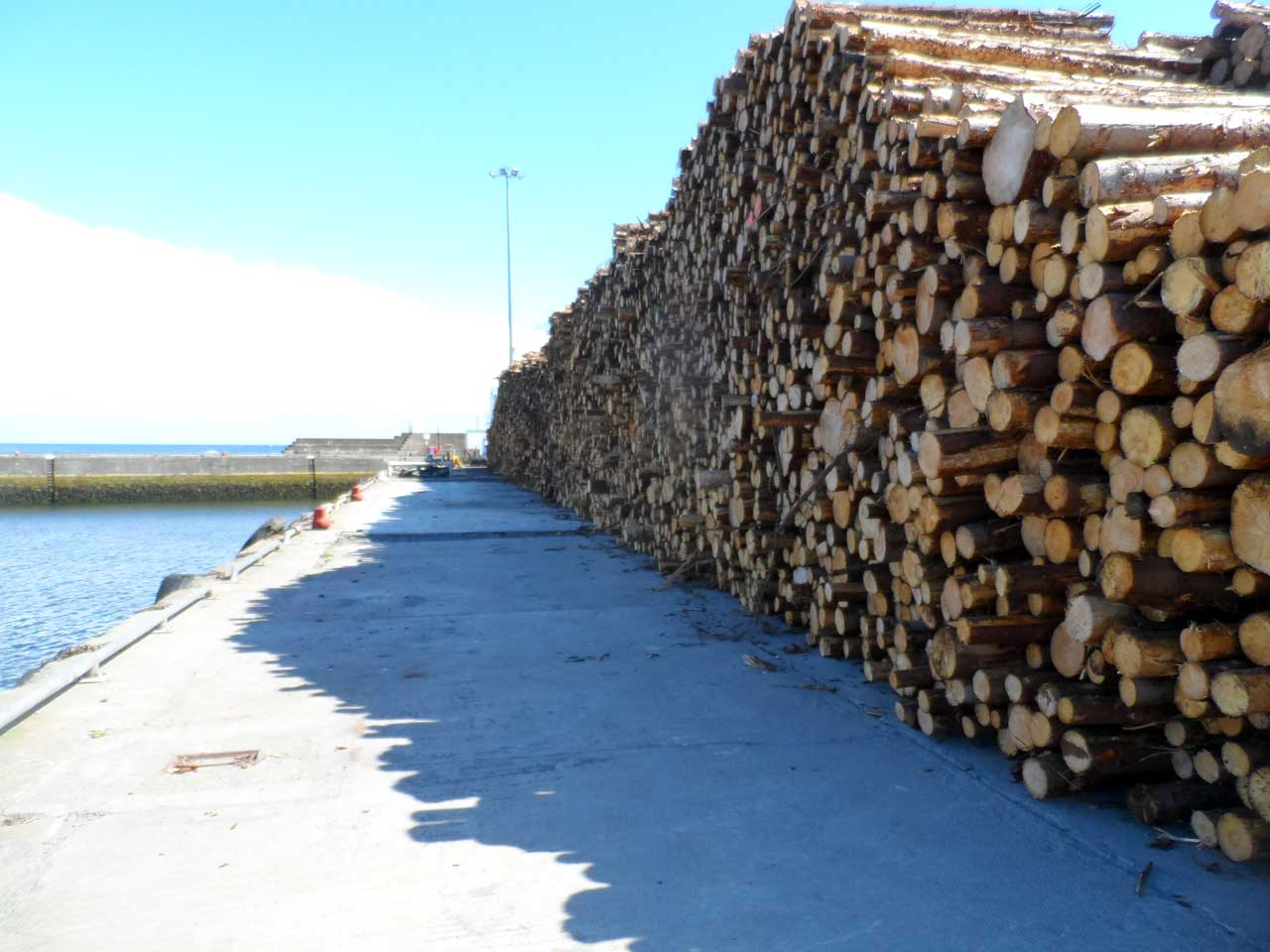 Photo: Increasing Timber Shipments From Wick Harbour
