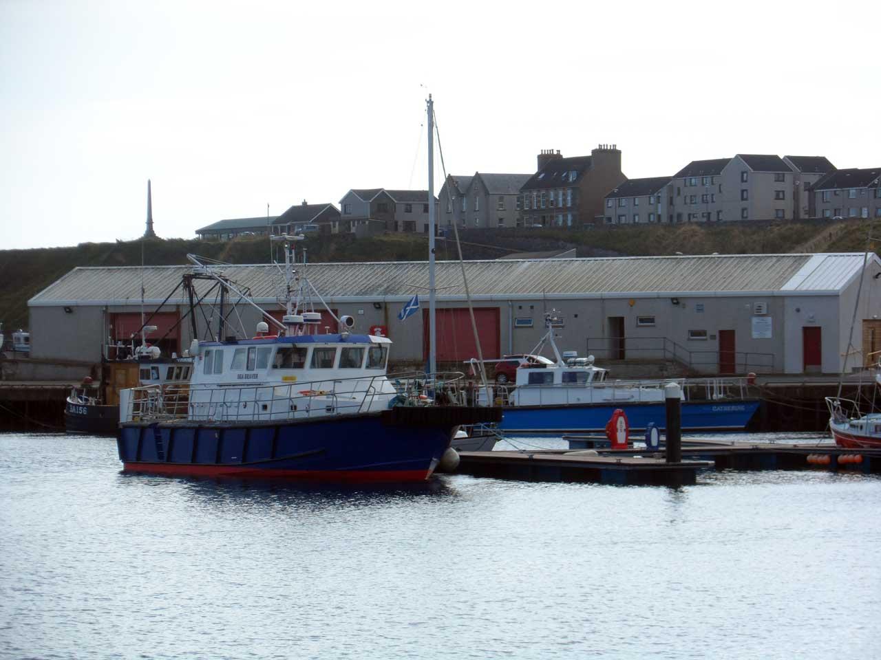 Photo: Wick Harbour - 27 September 2014