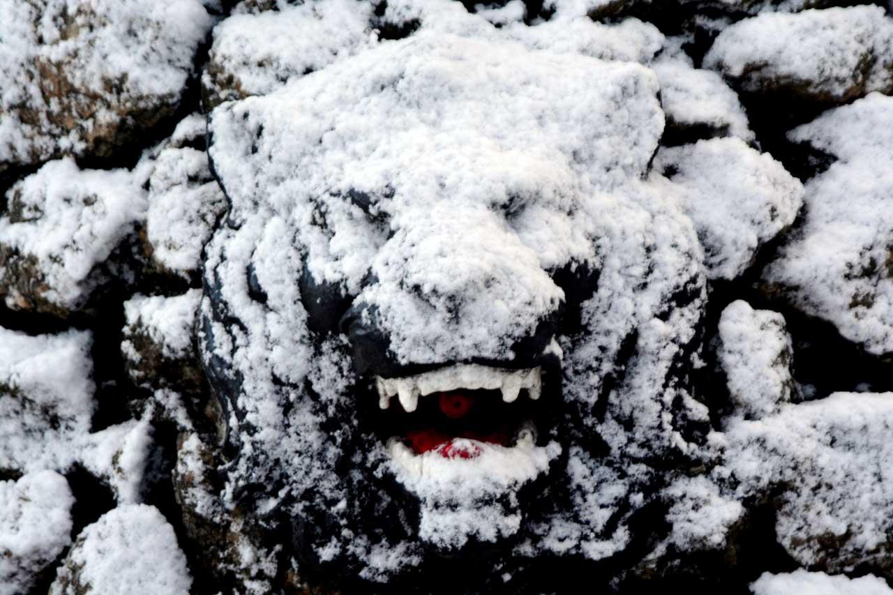 Photo: Snow Scenes In Wick