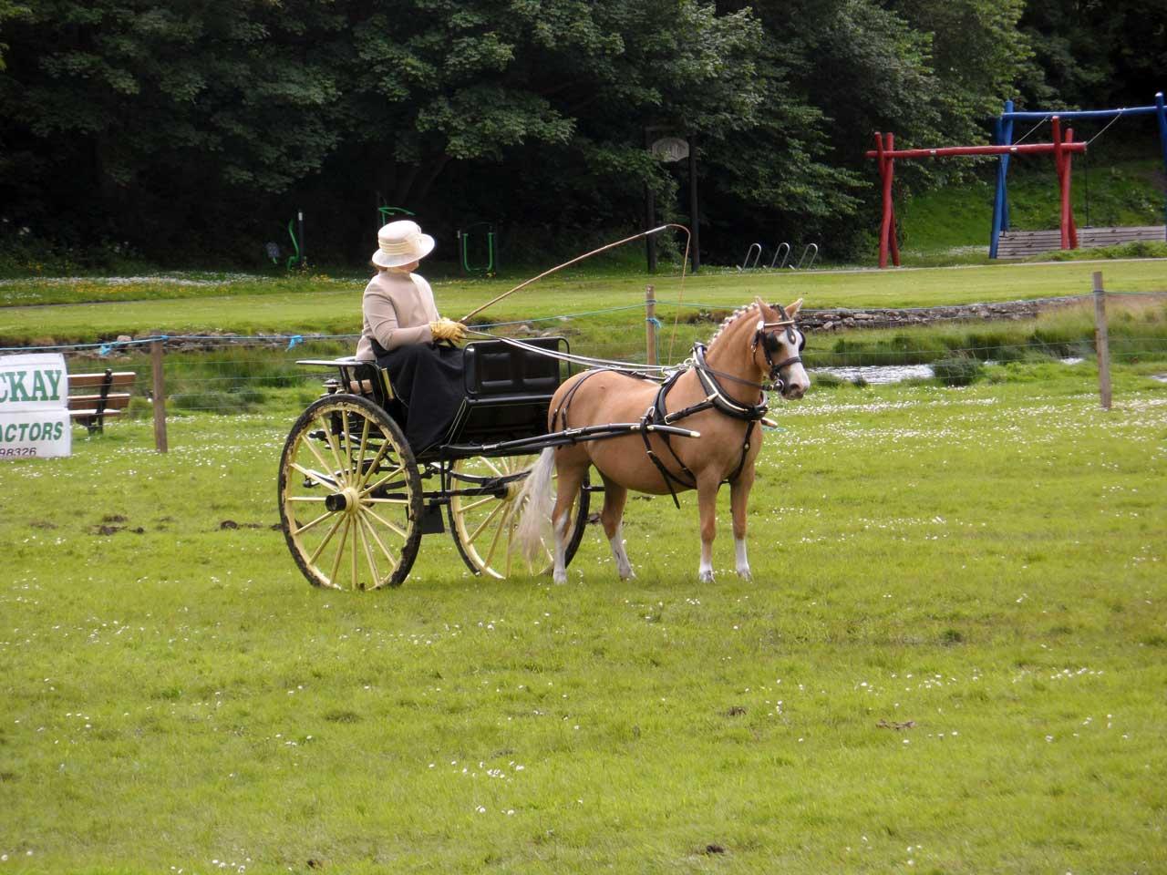 Photo: Caithness County Show 2015
