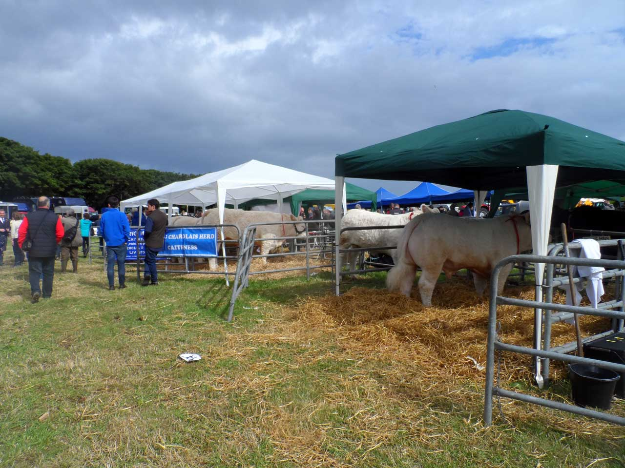 Photo: Caithness County Show 2016