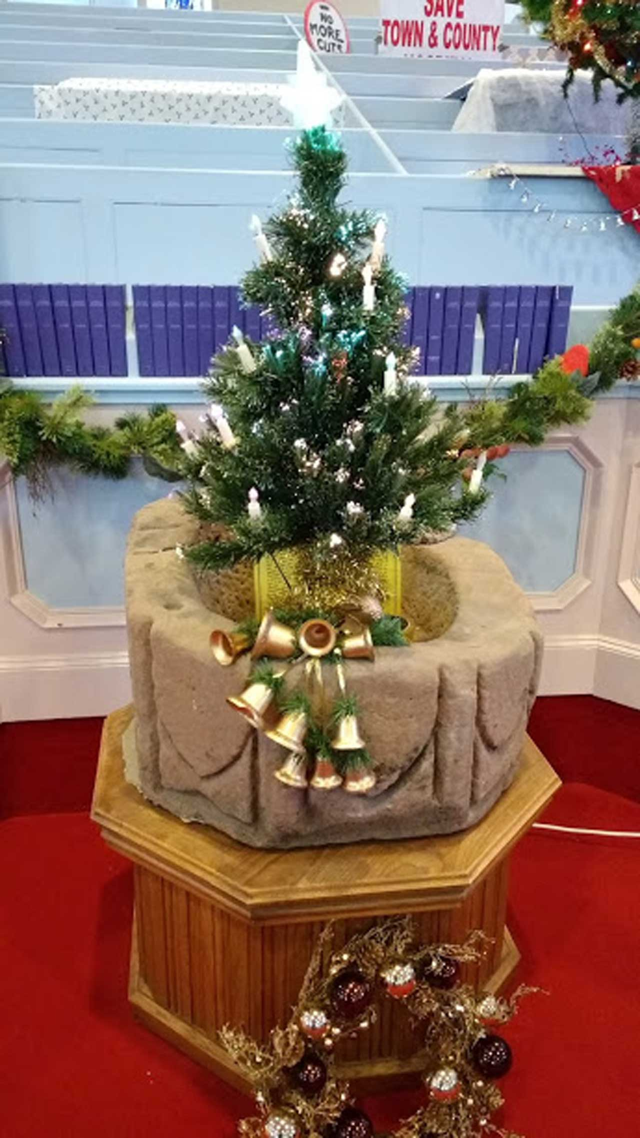 Photo: Christmas Trees Display In Wick