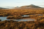 Potential world Heritgae site at Caithness and Sutherland Flow Country