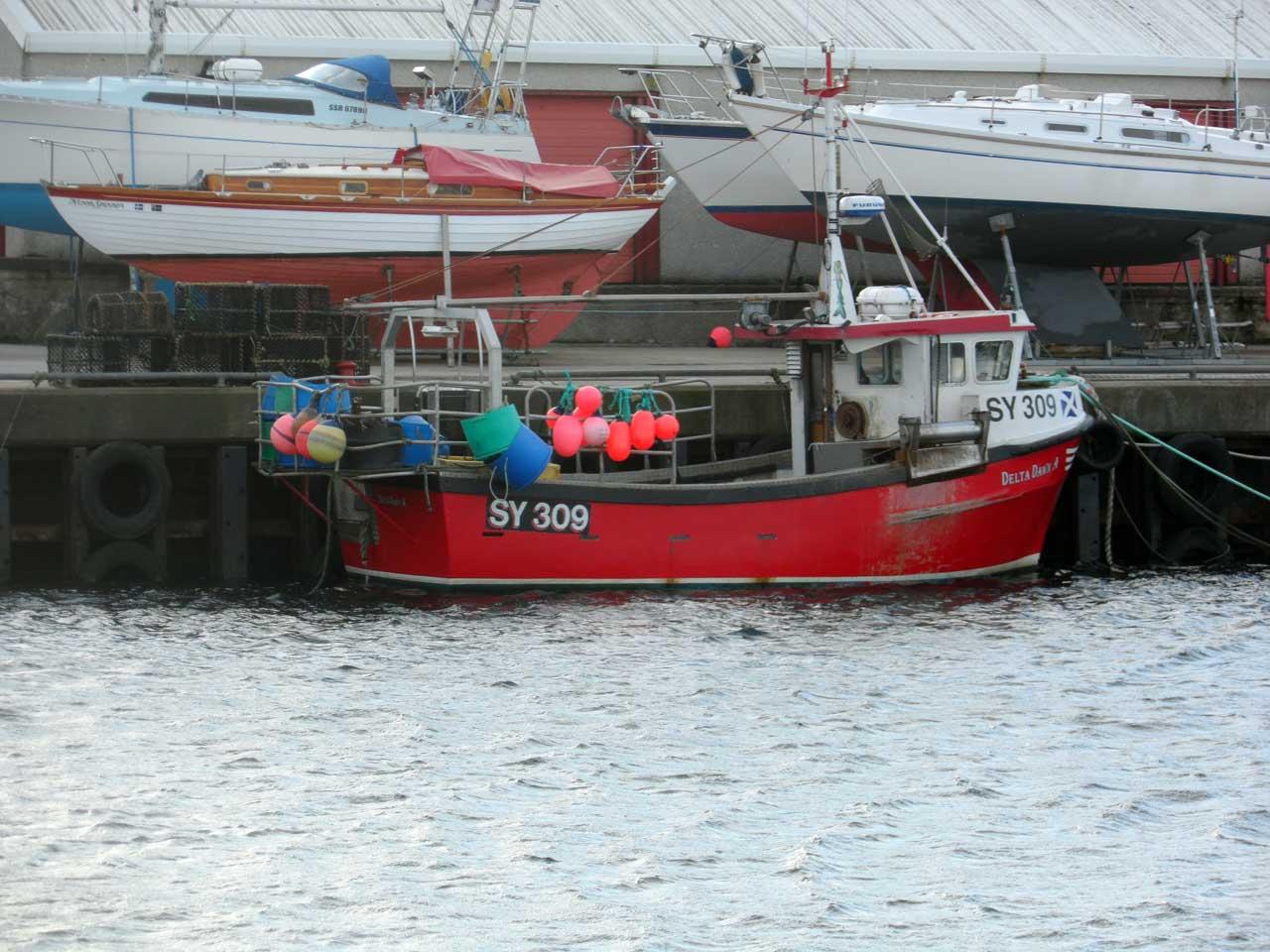 Photo: Wick Harbour January 2019