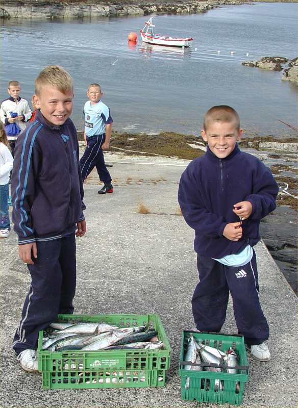 Photo: Staxigoe Harbour Fishing