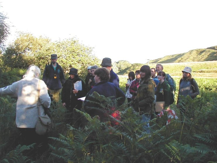 Photo: Volunteers Find Out About Lungwort Lichen