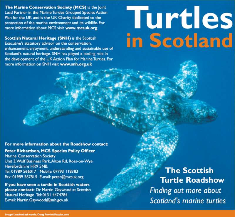 Photo: Part of Turtles In Scotland Leaflet From Scottish Natural Heritage
