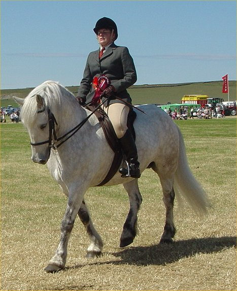 Photo: Caithness County Show 2006