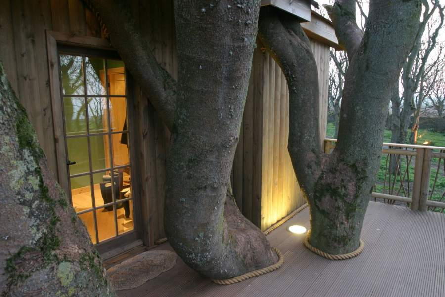 Photo: Tree house Entrance