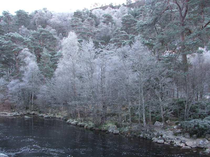 Photo: Glen Affric - Inverness-shire