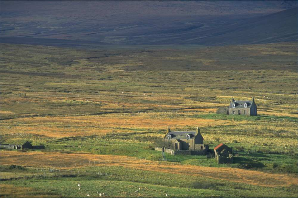 Photo: Estate Cottages