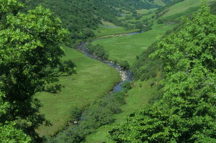 Photo: Berriedale Water