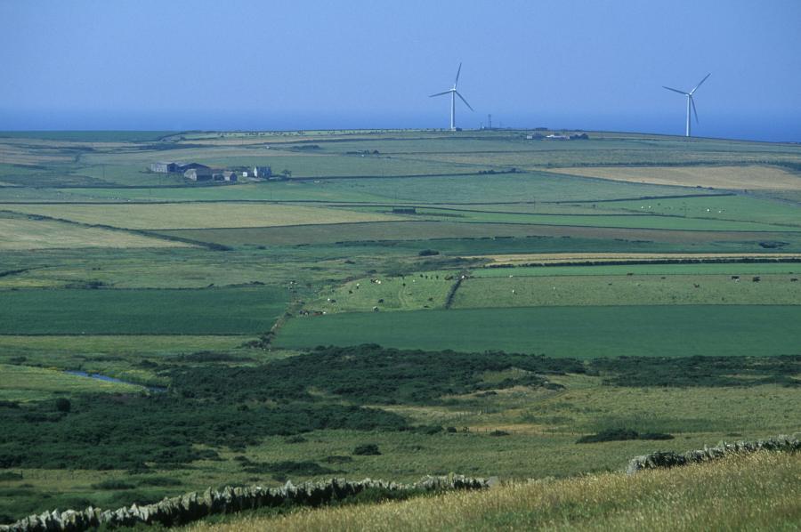 Photo: Farmland At Westfield