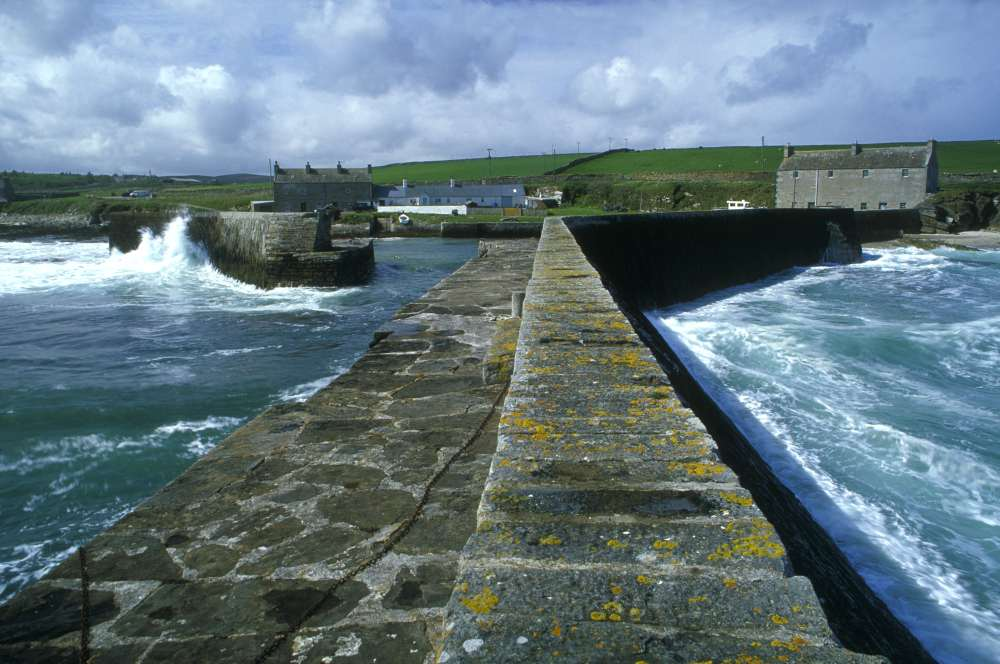 Photo: Fresgoe Harbour