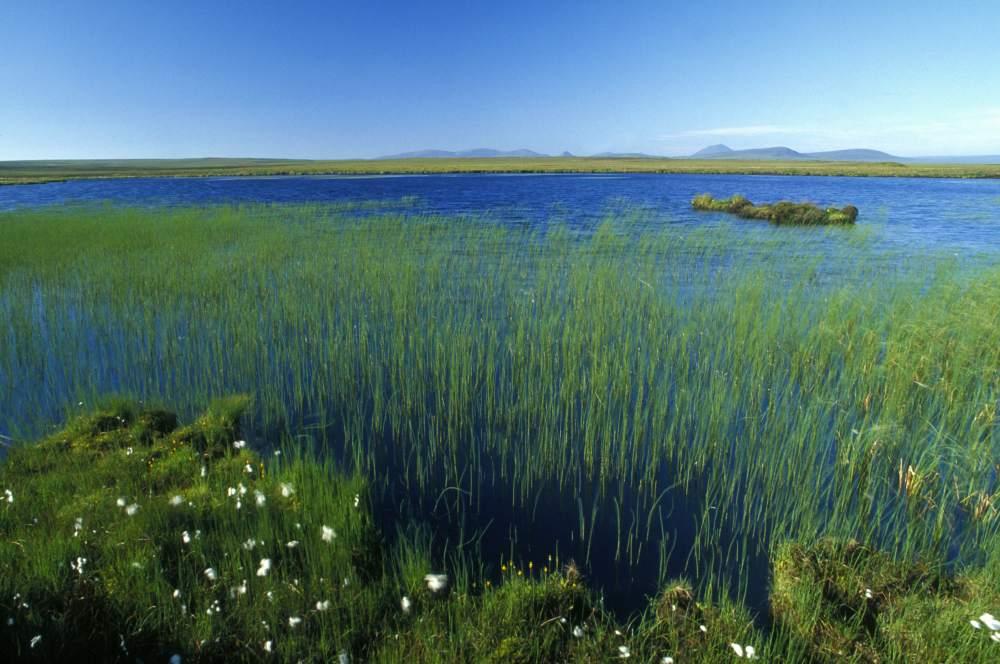 Photo: Loch Dubh 3