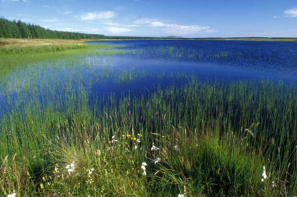 Photo: Loch Meadie
