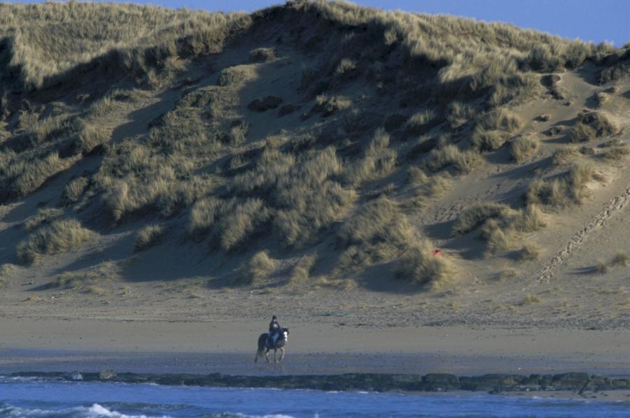 Photo: Horse Riding