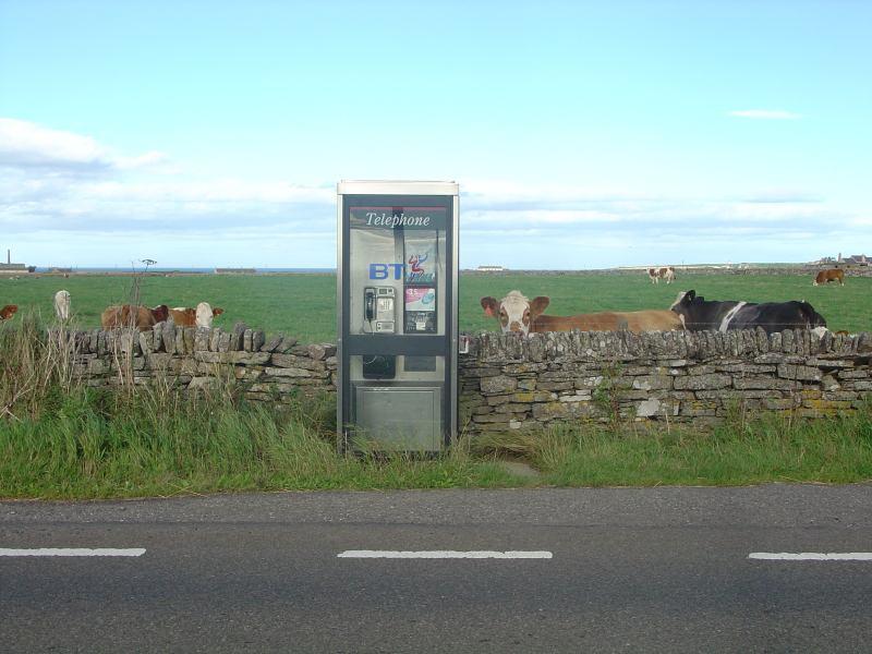 Photo: Ackergill Telephone