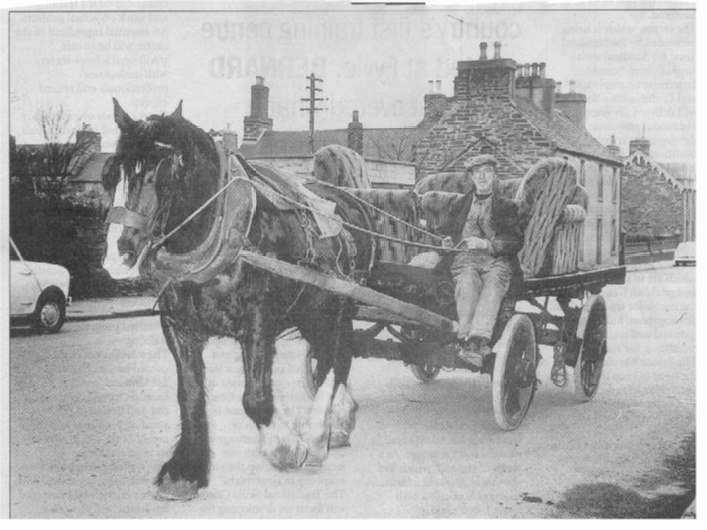 Photo: Aex Matheson with Horse and Cart