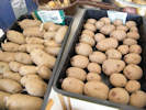 Seed potatoes - Charlotte & King Edwards chitted and ready for planting in April 2013