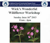Wick's Wildflower Workshop