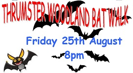 Bat night at Thrumster Woods