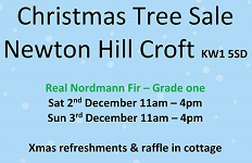 Christmas Trees for sale at Newtonhill Croft 2nd and 3rd December 2017