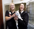 Moira from Semichem Thurso visited Scottish SPCA's Caithness re-homing centre to see how funding will make a difference.