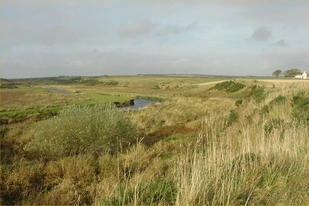 Photo: Wick To Altimarlach