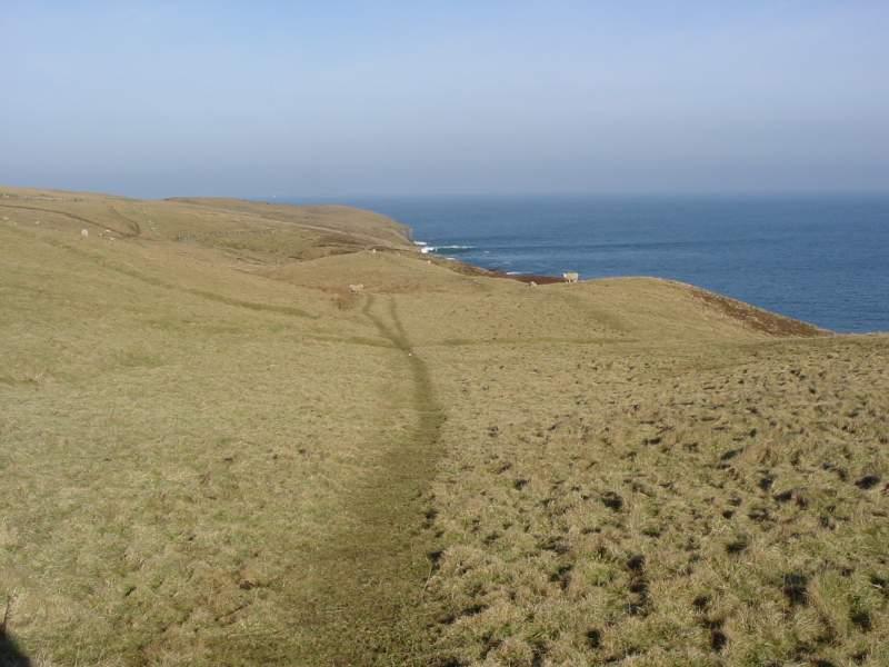 Photo: Holborn Head Walk