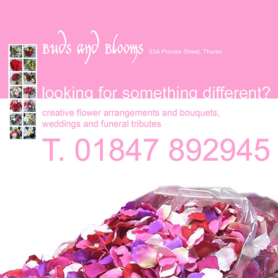 Buds & Blooms Advert