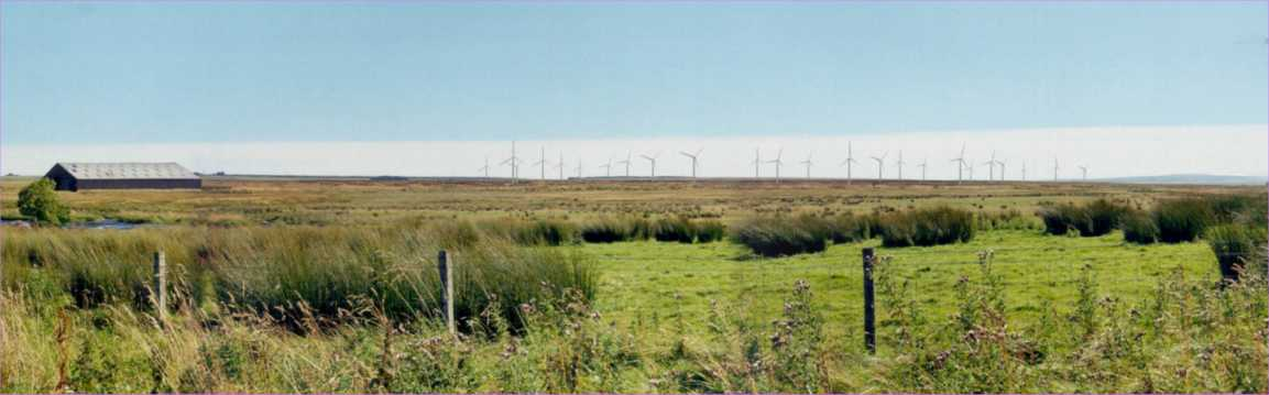 Photo: Wind Farm Causeymire